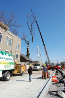 Remove-Large-Branch-with-Crane-Saint-Marys-Cathedral-Basilica-of-the-Assumption-Covington-KY-Gregory-Forrest-Lester
