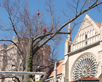 Remove-Large-Branch-with-Crane-Saint-Marys-Cathedral-Basilica-of-the-Assumption-Covington-KY-Gregory-Forrest-Lester21