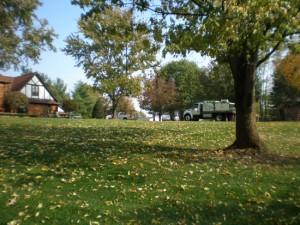 Cincinnati Tree Service
