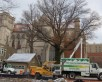 Preparing to Remove Tree - Saint Mary's Cathedral Basilica of the Assumption - Covington, KY - Gregory Forrest Lester